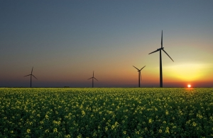 Why Should I Use Green Energy Sources?.